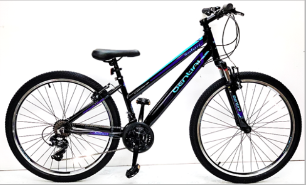 Bentini Safari Bike